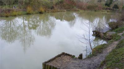 Canal Lake 1