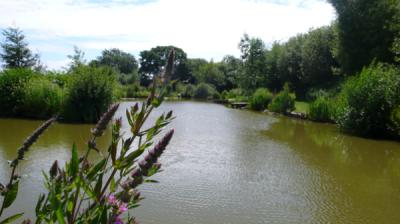 Spring Lake 2