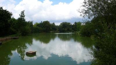 Tench Lake